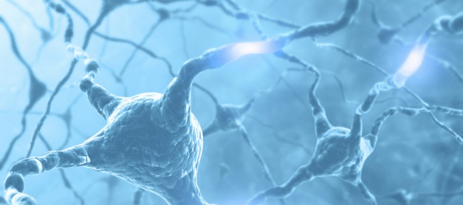 Inside the brain. Concept of neurons and nervous system. Two neurons transmitting information.